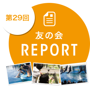第29回レポート